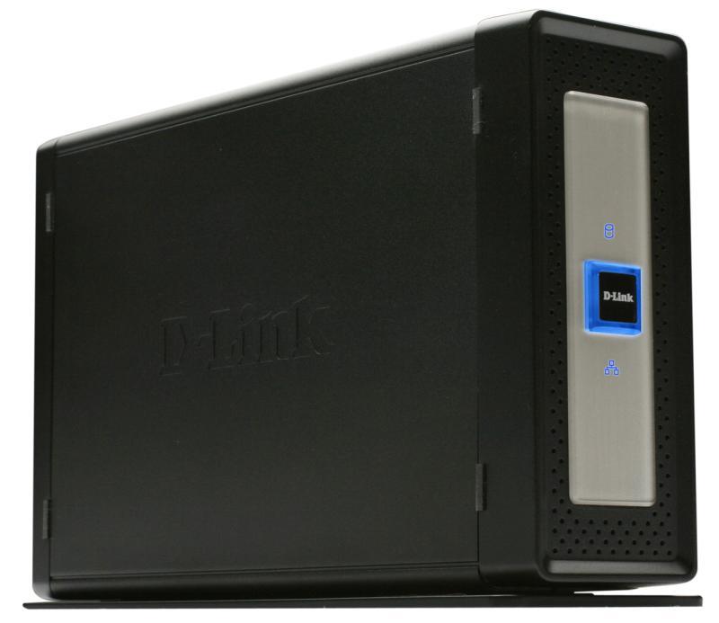 DNS-313